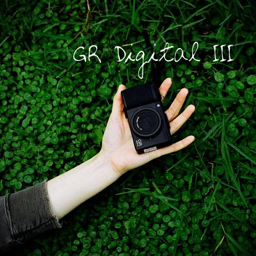 grd3.jpg