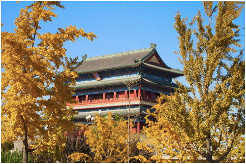 Beijing-5.jpg
