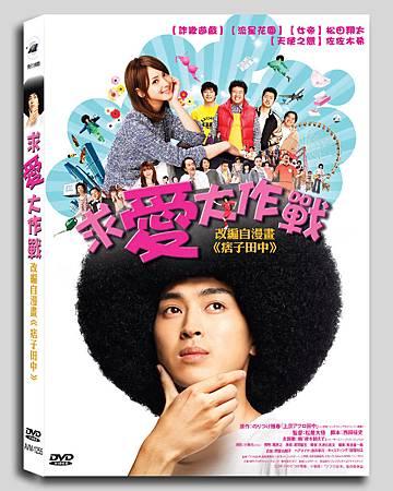 求愛大作戰DVD