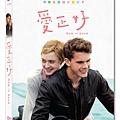 愛正好DVD