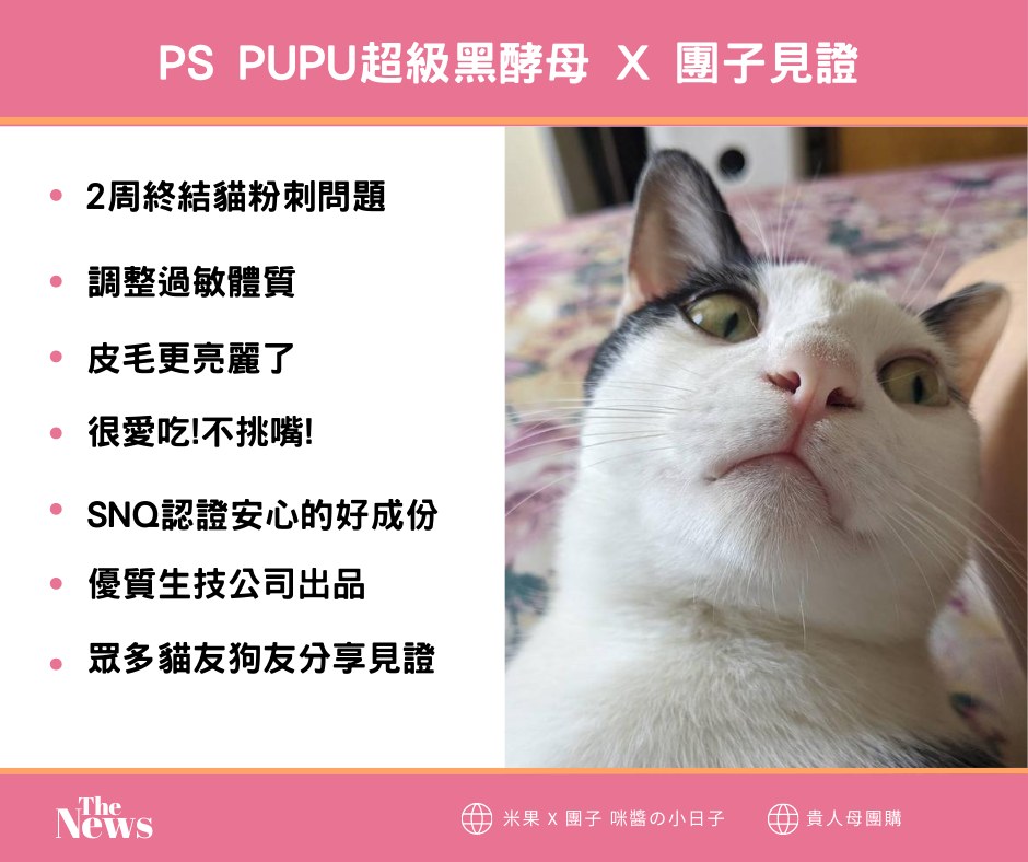 PS PUPU超級黑酵母 X 團子見證 (1).png