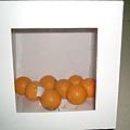 070629 Demo (Apple tree)