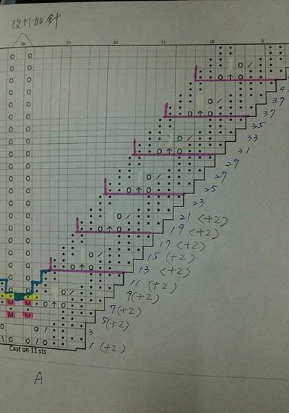 Westcott-Shawl 圖AC邊花的修正圖.jpg