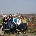 20090208南投沙雕節 (9).JPG
