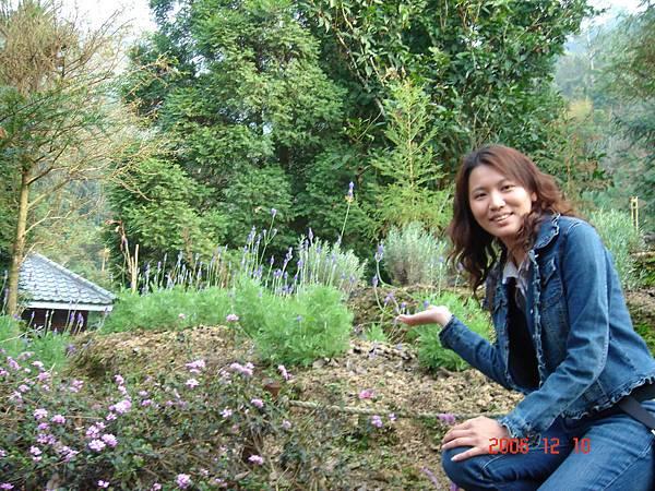 20061210-新社安妮花園及薰衣草森林 (11).JPG