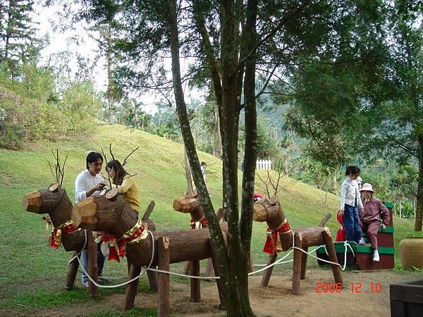 20061210-新社安妮花園及薰衣草森林 (14).JPG