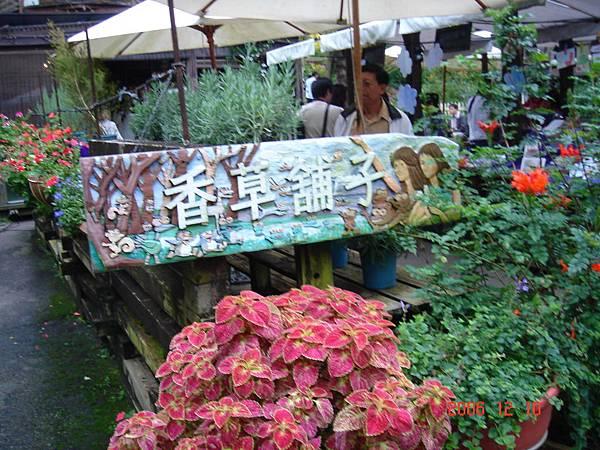 20061210-新社安妮花園及薰衣草森林 (20).JPG