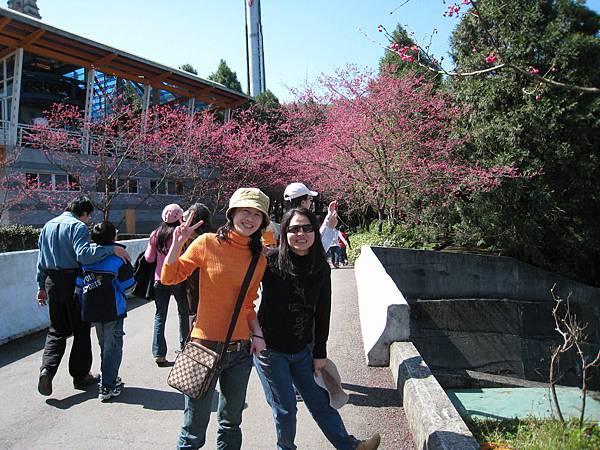 20080218-南投九族文化村 (11).jpg