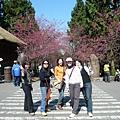 20080218-南投九族文化村 (32).JPG