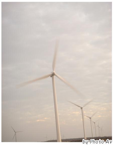 20081116鹿港半日遊VS彰濱風車 (6).JPG