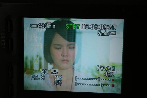 2008.04.23花樹下 011.jpg