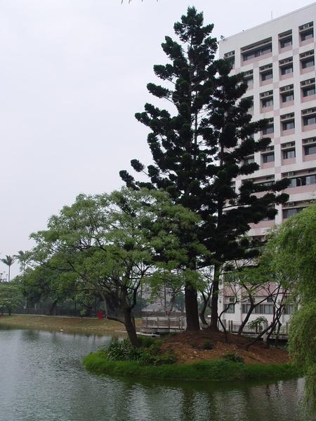 DSC04208.JPG