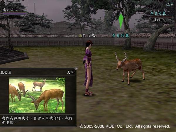 信on奈良的鹿.JPG