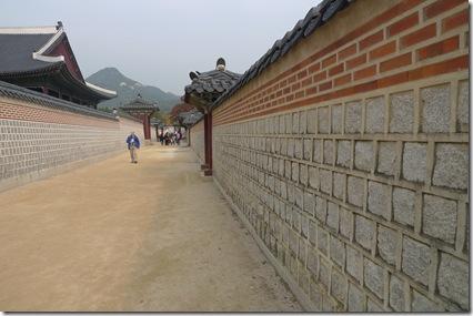 korea (579)