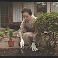 [白夜行] 唐沢媽媽想處理鄰居送的仙人掌,卻意外發現埋在土裡的不堪