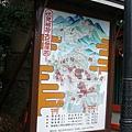 06-伏見稲荷大社-叁拝図