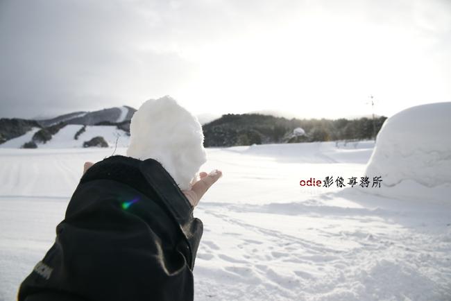 _DSC9138.jpg