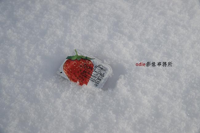 _DSC9141.jpg