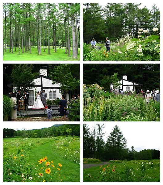 0715 08富良野 風之花園