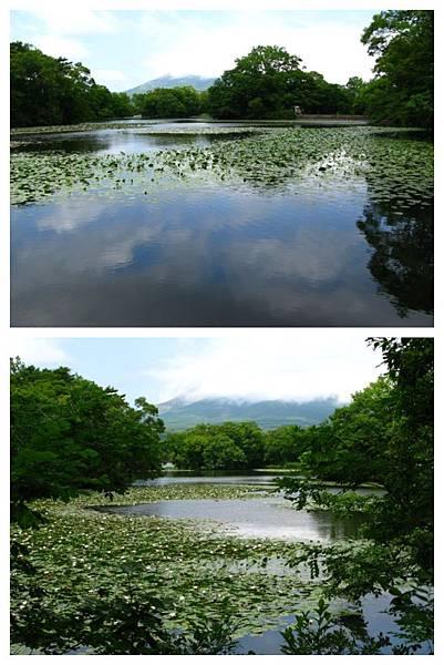 0801 01大沼公園