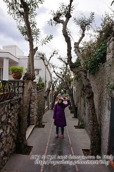 Day05-Capri (145).jpg