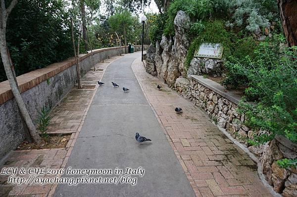 Day05-Capri (164).jpg