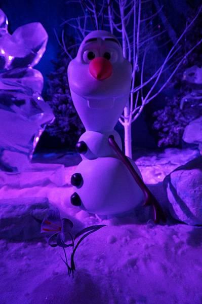 Disney Frozen (167).JPG