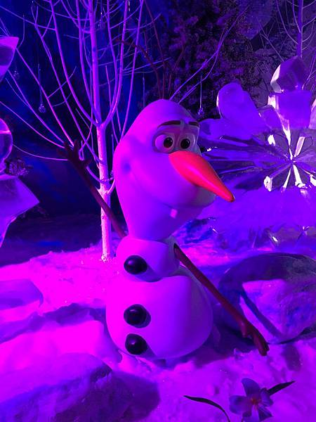 Disney Frozen (172).JPG