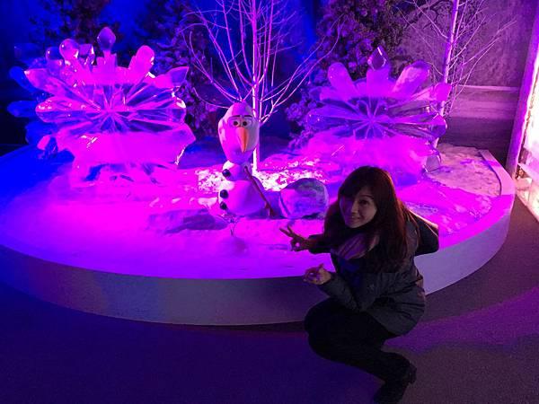 Disney Frozen (174).JPG