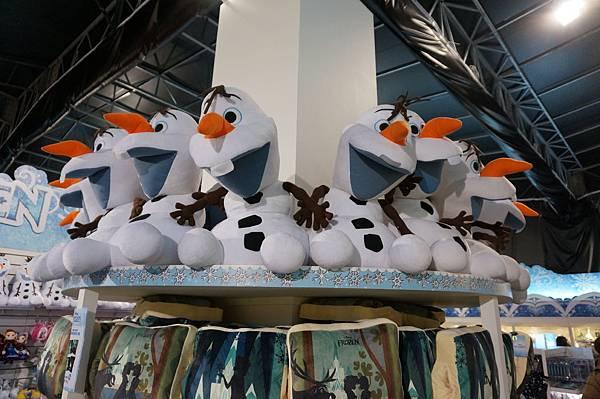 Disney Frozen (333).JPG