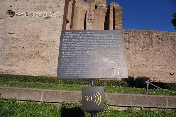 Day06-Roma (259).jpg
