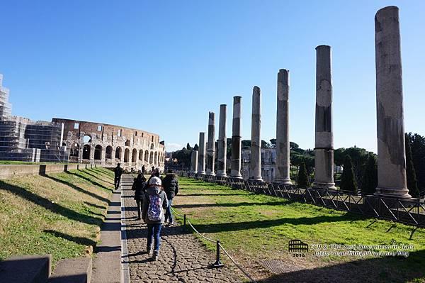 Day06-Roma (261).jpg