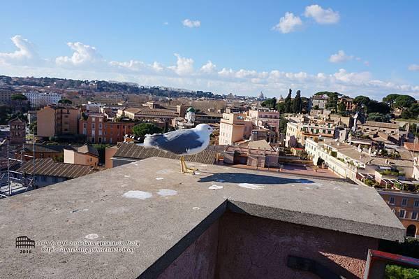 Day06-Roma (316).jpg