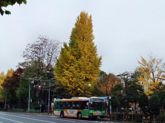 1122-舊岩埼庭園01.JPG