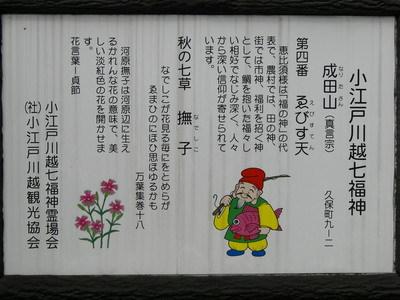 成田川越2.JPG
