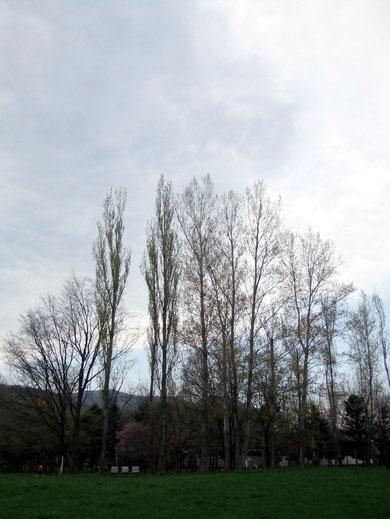 0509 真駒內公園03