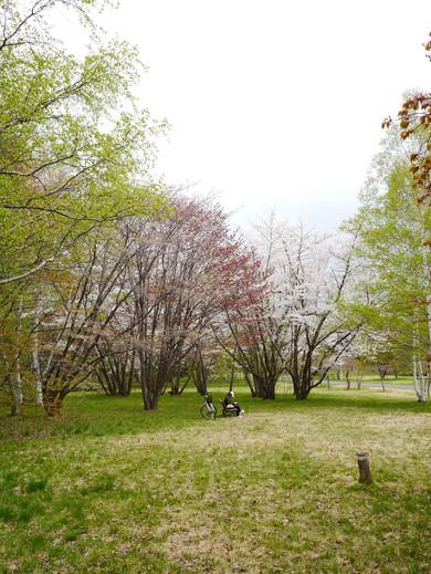 0509 真駒內公園20