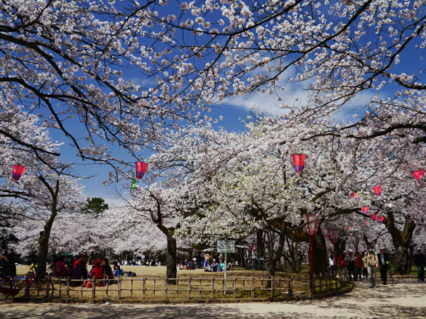 0409 富山高岡古城公園