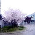 0407 大雨中的金澤21世紀美術館01