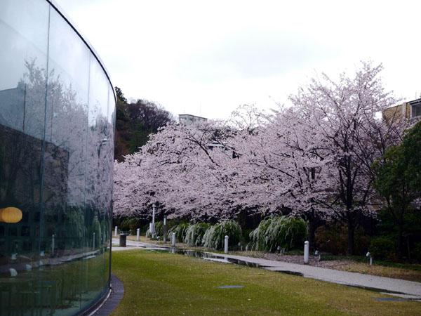 0407 大雨中的金澤21世紀美術館08