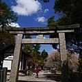 0408 足羽山05