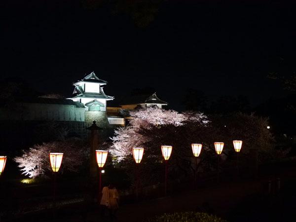0408 兼六園夜櫻27