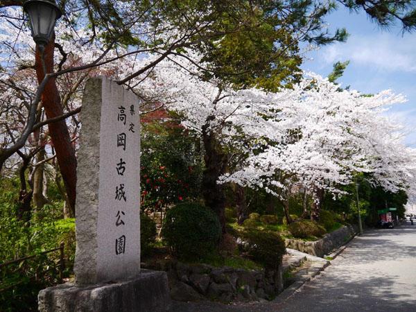 0409 高岡古城公園01