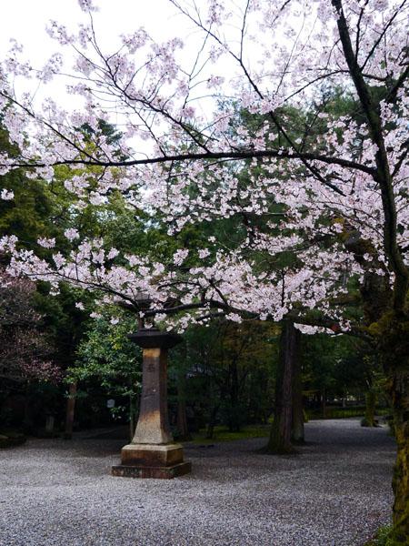 0411 尾山神社12