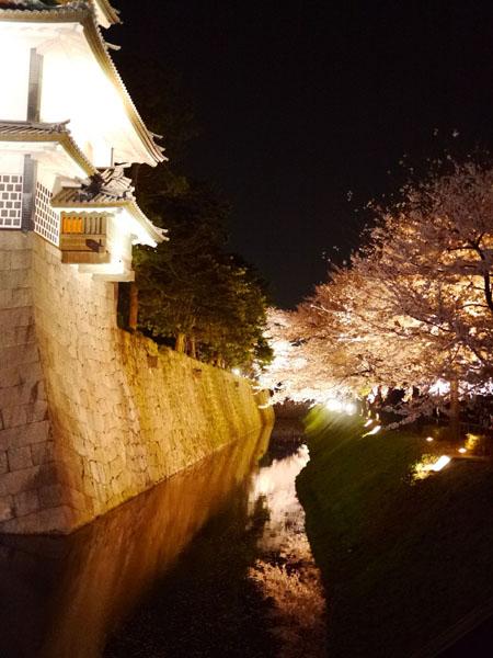 0408 金澤城公園夜櫻07