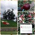 0926 蘋果公園&果園02.JPG