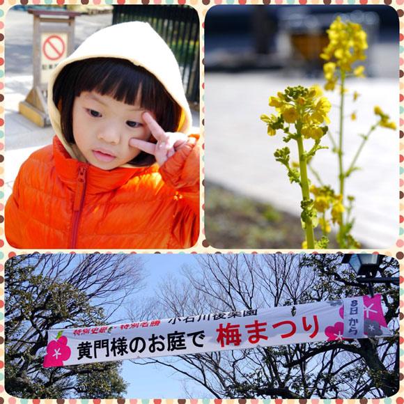 0207 小石川後樂園01.JPG