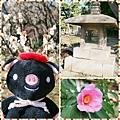 0207 小石川後樂園04.JPG