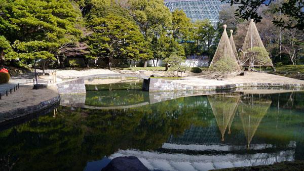 0207 小石川後樂園07.JPG
