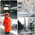 0208 東京遇大雪01.JPG